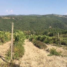 Frazione San Donato in Poggio tra la località Matriolo La Valluccia e Fornacine
