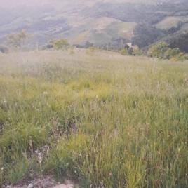Localita' Vocabolo Serre di Parrano