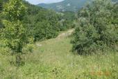 Borgo Val di Taro, Fraz. Pontolo e Baselica