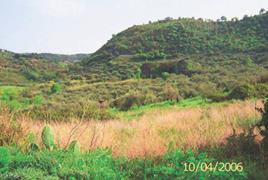VALLE TINDARI