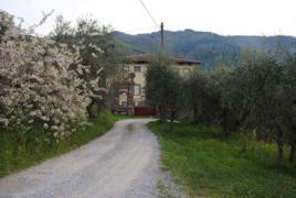"""frazione Matraia, località """"Manasse"""", via di Matraia s.n.c."""
