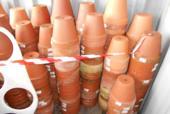 Lotto 4D) Circa 500 vasi in terracotta