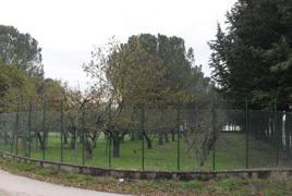 Localita' Taverne - Via Baldeschi