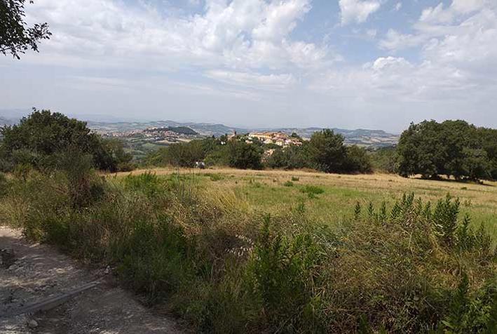Dettaglio immagine Localita' Piani di Reggetti, sc, Ancona (AN)