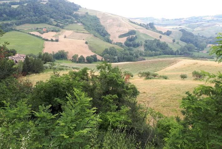 Dettaglio immagine LOCALITA' CA' MINELLO, FRAZIONE CA' MINELLO, Mercatino Conca (PU)